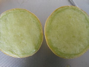Meloen granita