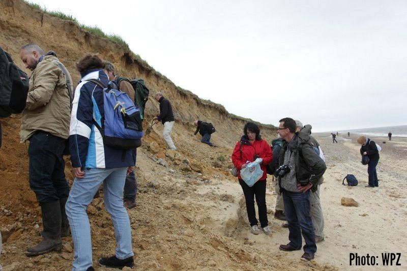 West Runton fossil hunting