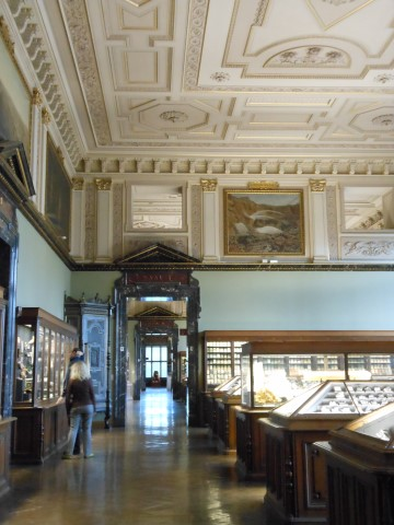 Wenen Het Natuurhistorisch Museum