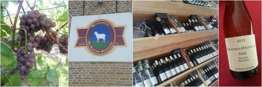 Wijngaard de Kleine Schorre