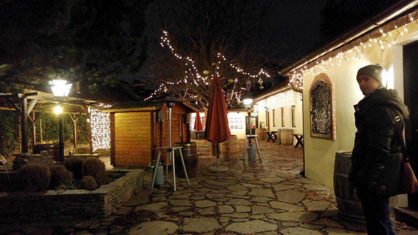 Weinhof Wieninger - Een kijkje bij de heurigen in Wenen