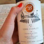 3 Tips voor een Citytrip Namen in Wallonië - Chateau de Bioul