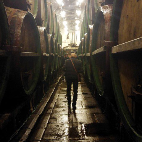 Pilsner Urquell Brouwerij - kelders