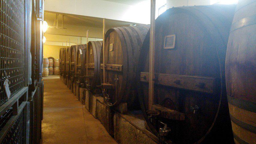 Quevedo Port wijnkelder
