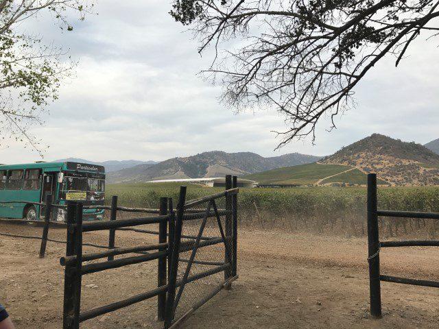 Paardrijden in Mendoza Argentinië