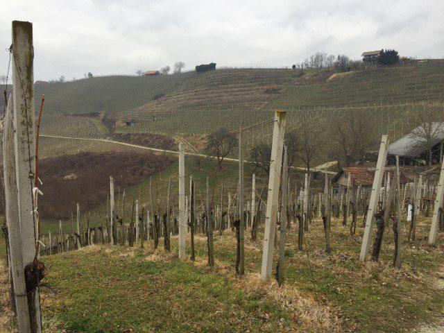 Bijzondere repnice wijnkelders in Slovenië