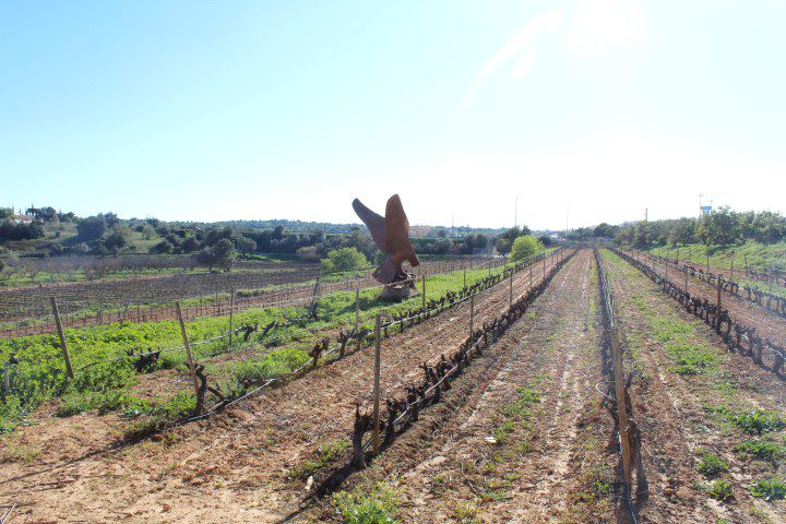 Op bezoek bij: Quinta dos Vales - Algarve Portugal