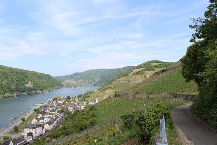 Een weekend vol wijn in de Rheingau
