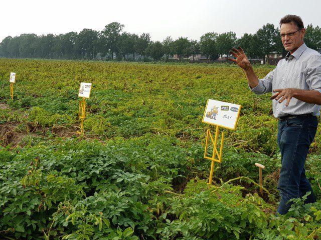 Uitleg over de nieuwe aardappelrassen