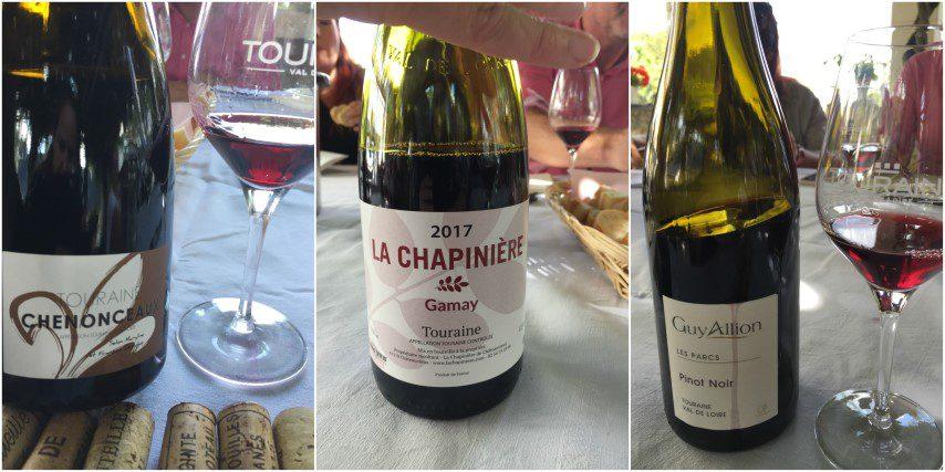 Wijnen in de Loire - Touraine