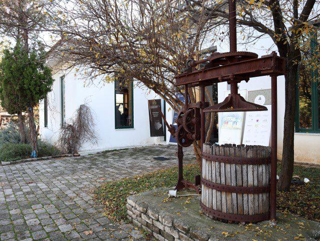 De geuren, kleuren en smaken van Attica - Domaine Vassiliou