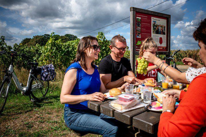 Sprankelend Hagelanden - Fietsen langs de wijngaarden - Lander Loeckx