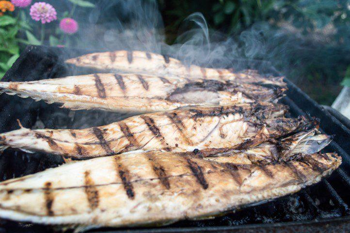 Allemaal aan de vette vis en olijfolie dankzij Omega 3