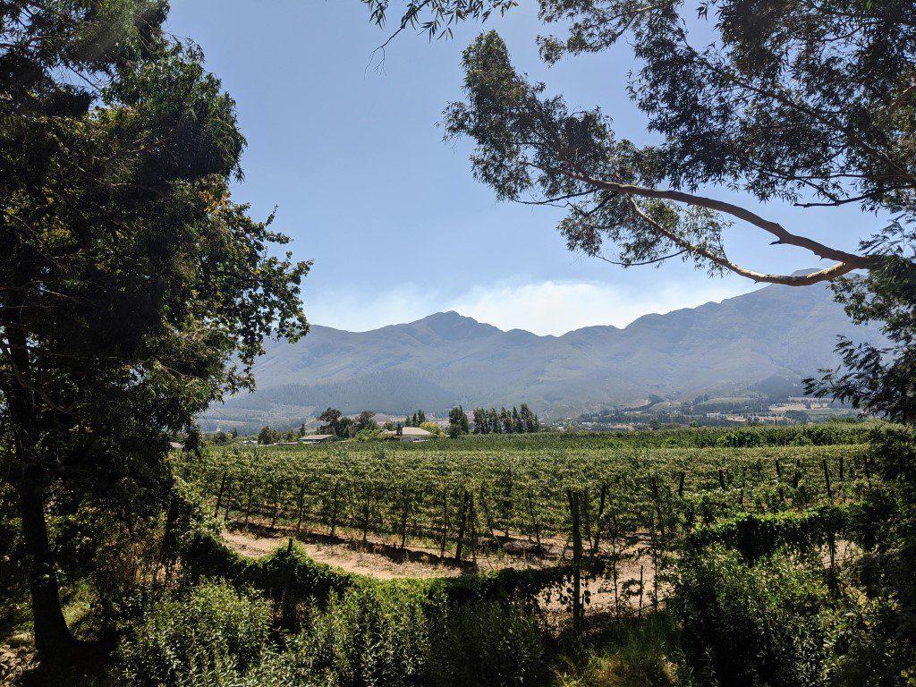 Franschhoek wijntour en fietstocht