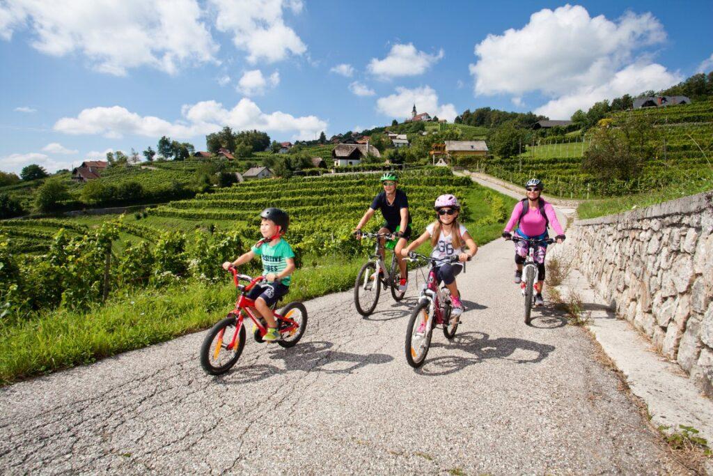 Door de wijngaarden fietsen in Slovenië