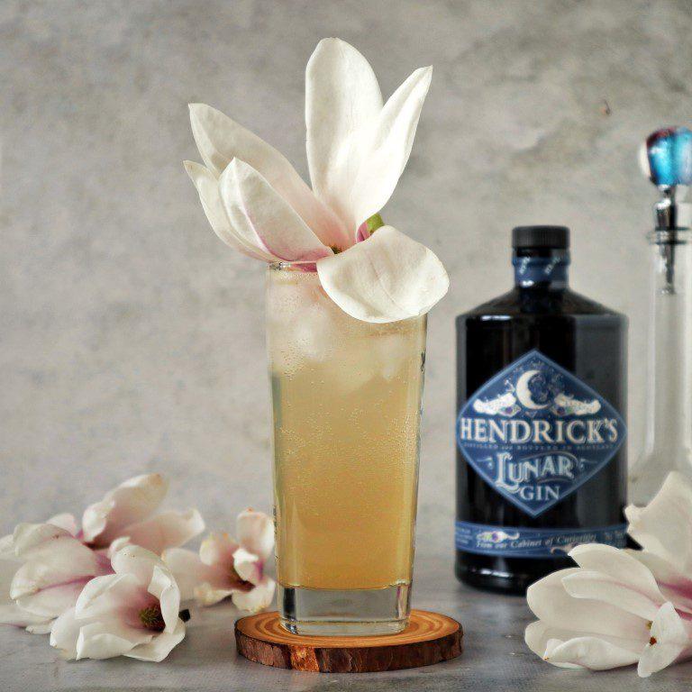 Gin cocktail: Midnight Magnolia Collins met Hendrick's Lunar Gin