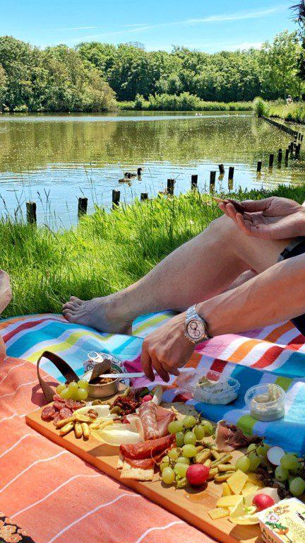 Borrelplank picknick