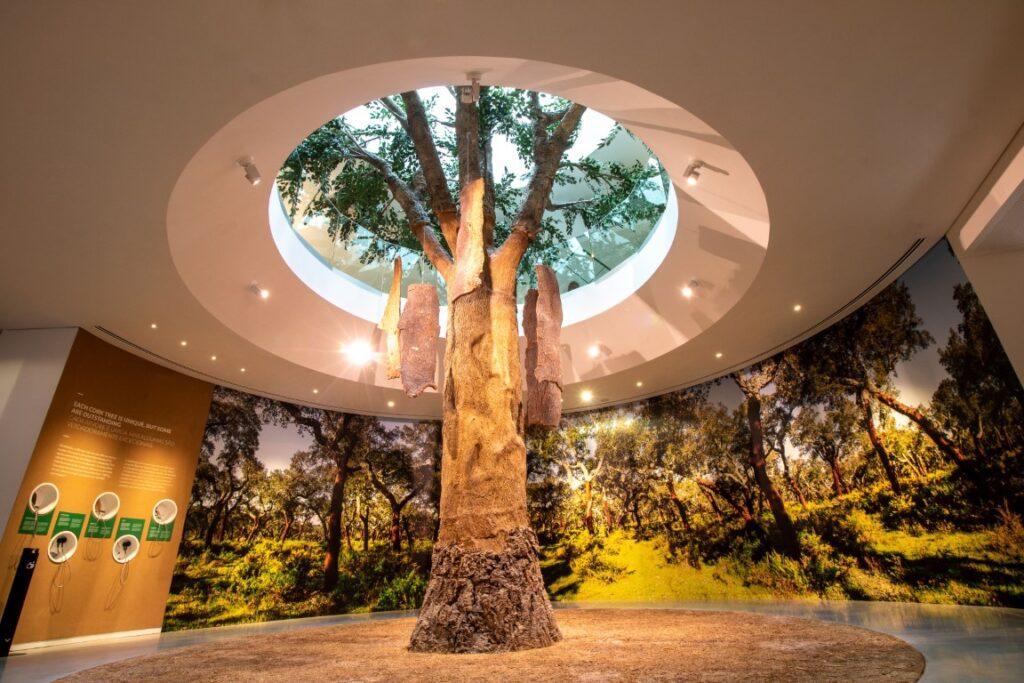 Planet Cork - ©Hilodi World of Wine